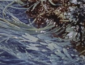Waves_04-min